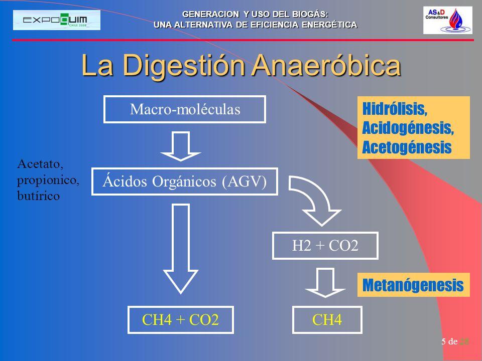 GENERACION Y USO DEL BIOGÁS: UNA ALTERNATIVA DE EFICIENCIA ENERGÉTICA 5 de 28 La Digestión Anaeróbica Macro-moléculas Ácidos Orgánicos (AGV) Acetato,