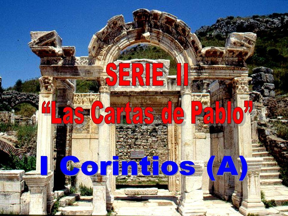 29/VI/2008 – 29/VI/2009 TEXTO: Antonio Rodríguez Carmona MONTAJE: Antonio García Polo MÚSICA: J. S. Bach