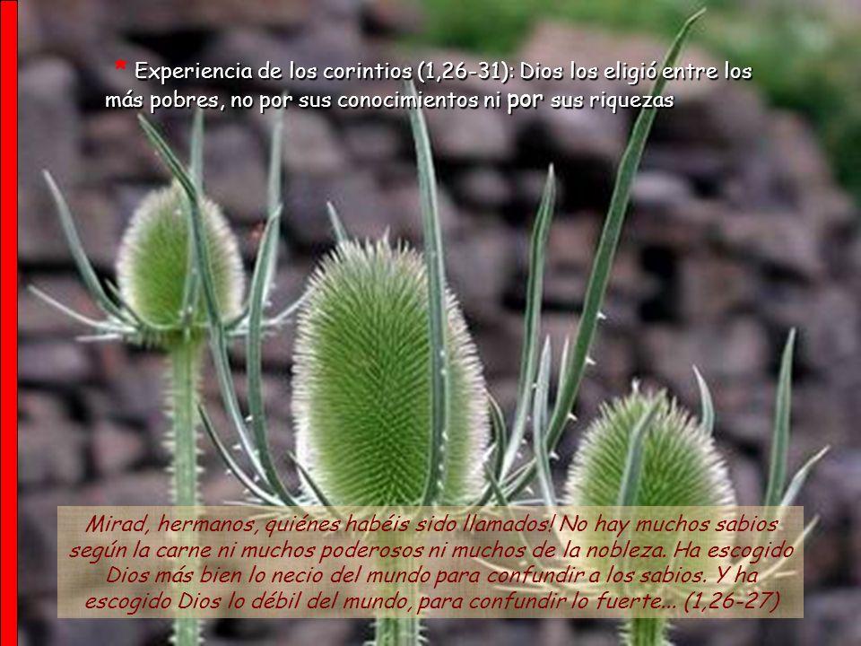 La sabiduría del mundo y el evangelio, poder de Dios (1,17-25) Porque...