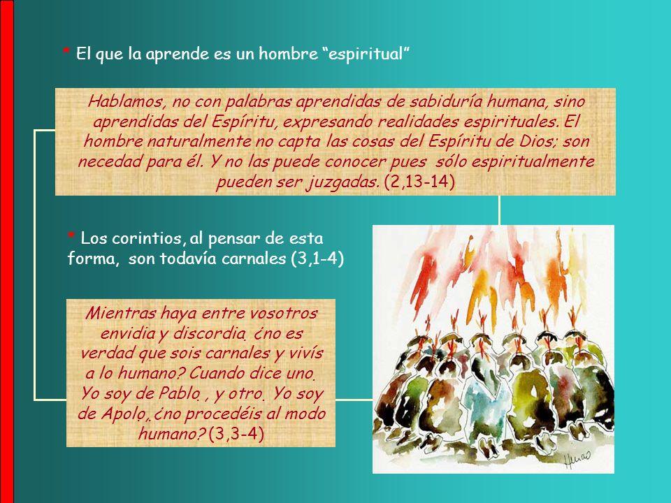 Hablamos de una sabiduría de Dios, misteriosa, escondida, destinada por Dios desde antes de los siglos para gloria nuestra..., (2,7) A la sabiduría humana contrapone la divina, que la concede el Espíritu Santo: B) La sabiduría del Evangelio (2,6-3,3) A nosotros nos la reveló Dios por medio del Espíritu; y el Espíritu todo lo sondea, hasta las profundidades de Dios (2,10) * La revela el Espíritu Santo: * Existe una sabiduría cristiana (2,6-16)