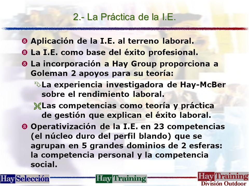 """2.- La Práctica de la I.E. """"Aplicación de la I.E. al terreno laboral. """"La I.E. como base del éxito profesional. """"La incorporación a Hay Group proporci"""