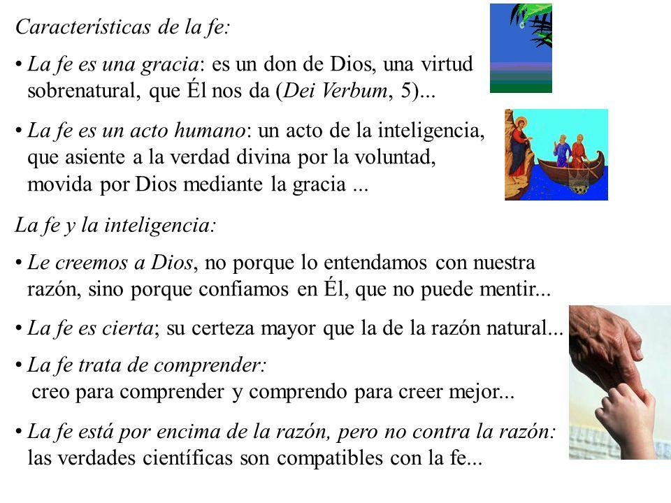 La fe es una gracia: es un don de Dios, una virtud sobrenatural, que Él nos da (Dei Verbum, 5)...