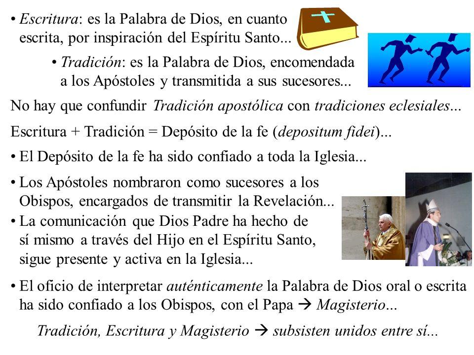 Los Apóstoles nombraron como sucesores a los Obispos, encargados de transmitir la Revelación...
