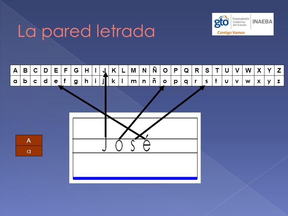 a) Dobla a la mitad una hoja tama ñ o carta de manera vertical y c ó rtala.