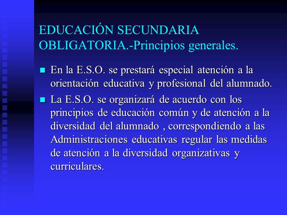 EDUCACIÓN SECUNDARIA OBLIGATORIA.-Principios generales.