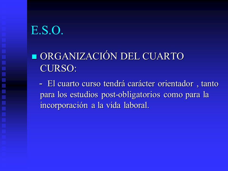 E.S.O.Programas de Diversificación Curricular. Se podrán establecer desde tercer curso de E.S.O.