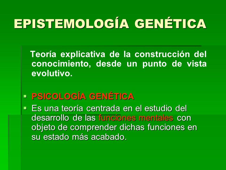 EPISTEMOLOGÍA GENÉTICA Teoría explicativa de la construcción del conocimiento, desde un punto de vista evolutivo. PSICOLOGÍA GENÉTICA PSICOLOGÍA GENÉT