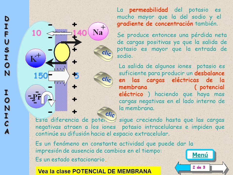 Hay numerosos fenómenos asociados, entre los que se halla la difusión de iones a través de la membrana. Depende de la permeabilidad de cada ión el gra