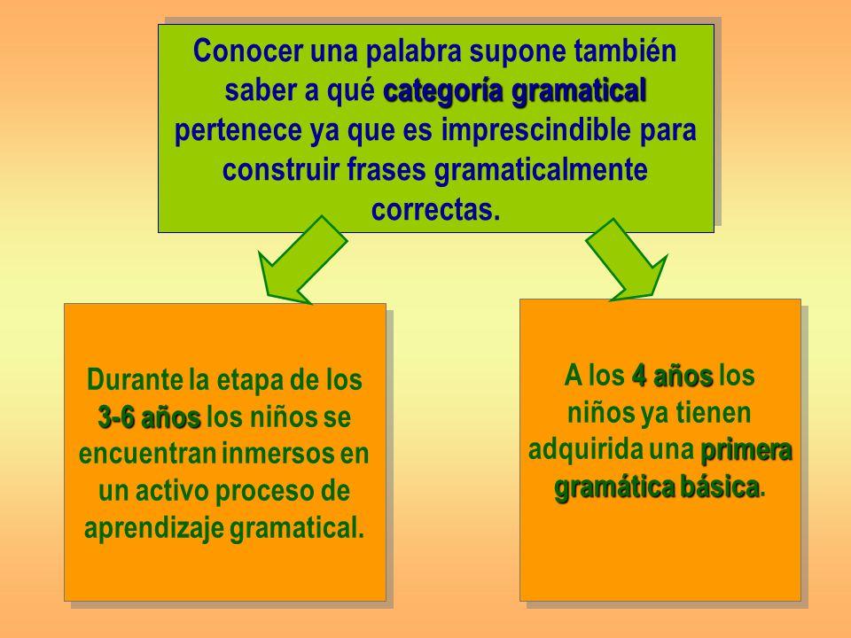 categoría gramatical Conocer una palabra supone también saber a qué categoría gramatical pertenece ya que es imprescindible para construir frases gramaticalmente correctas.