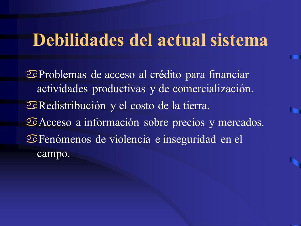 Debilidades del actual sistema Problemas de acceso al crédito para financiar actividades productivas y de comercialización. Redistribución y el costo