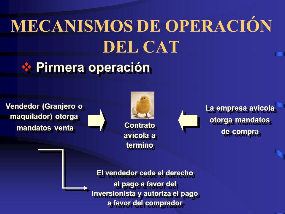 MECANISMOS DE OPERACIÓN DEL CAT Vendedor (Granjero o maquilador) otorga mandatos venta Vendedor (Granjero o maquilador) otorga mandatos venta La empre