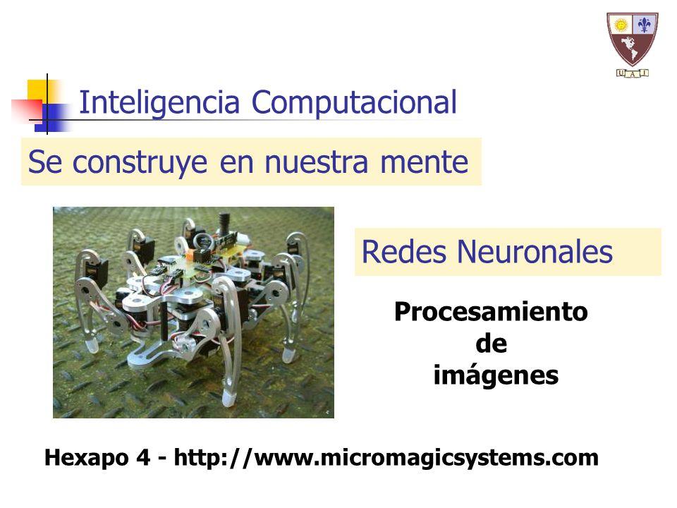 Hexapo 4 - http://www.micromagicsystems.com Inteligencia Computacional Se construye en nuestra mente Redes Neuronales Procesamiento de imágenes