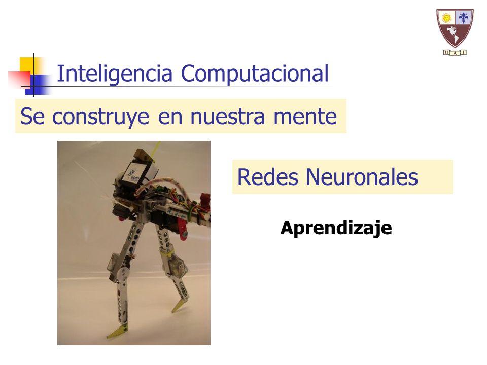 Inteligencia Computacional Se construye en nuestra mente Redes Neuronales Aprendizaje