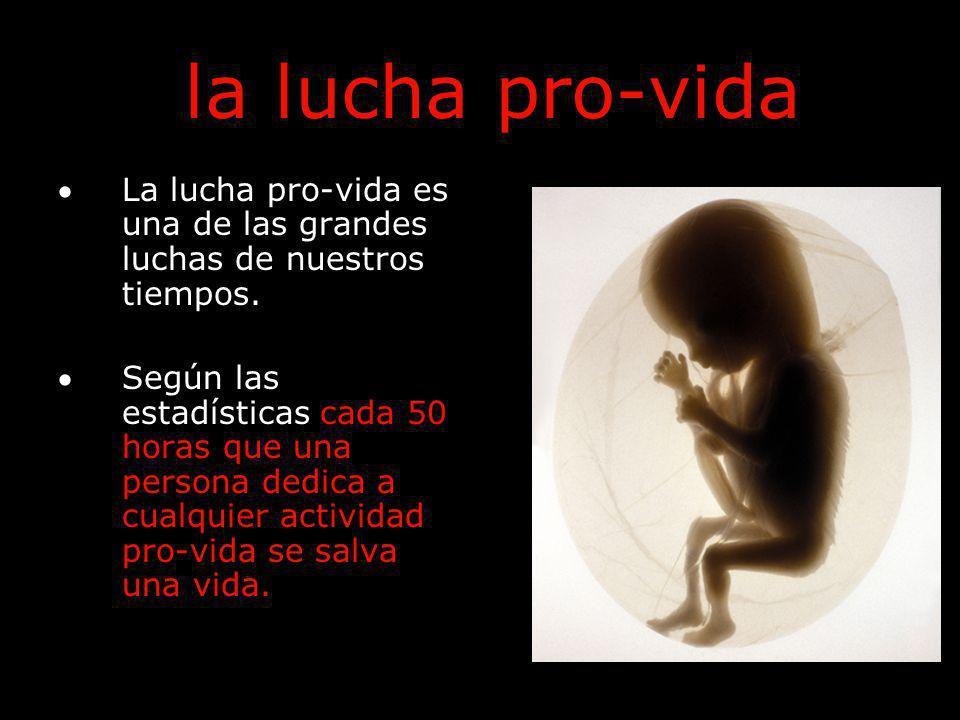 la lucha pro-vida La lucha pro-vida es una de las grandes luchas de nuestros tiempos.