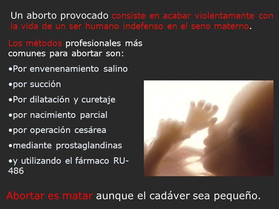 Un aborto provocado consiste en acabar violentamente con la vida de un ser humano indefenso en el seno materno.