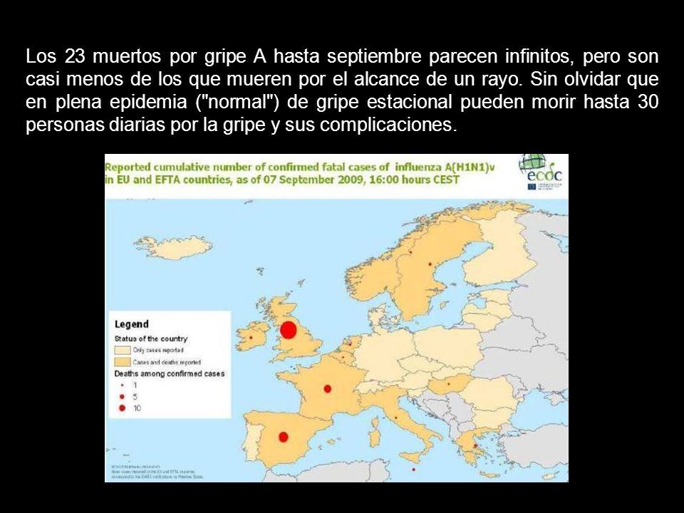 En el invierno austral (que coincide con el verano en España), en la Argentina han muerto unas 350 personas, en Chile 128 y en Nueva Zelanda 16 person