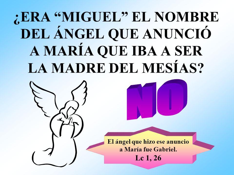 ¿ERA MIGUEL EL NOMBRE DEL ÁNGEL QUE ANUNCIÓ A MARÍA QUE IBA A SER LA MADRE DEL MESÍAS? El ángel que hizo ese anuncio a María fue Gabriel. Lc 1, 26