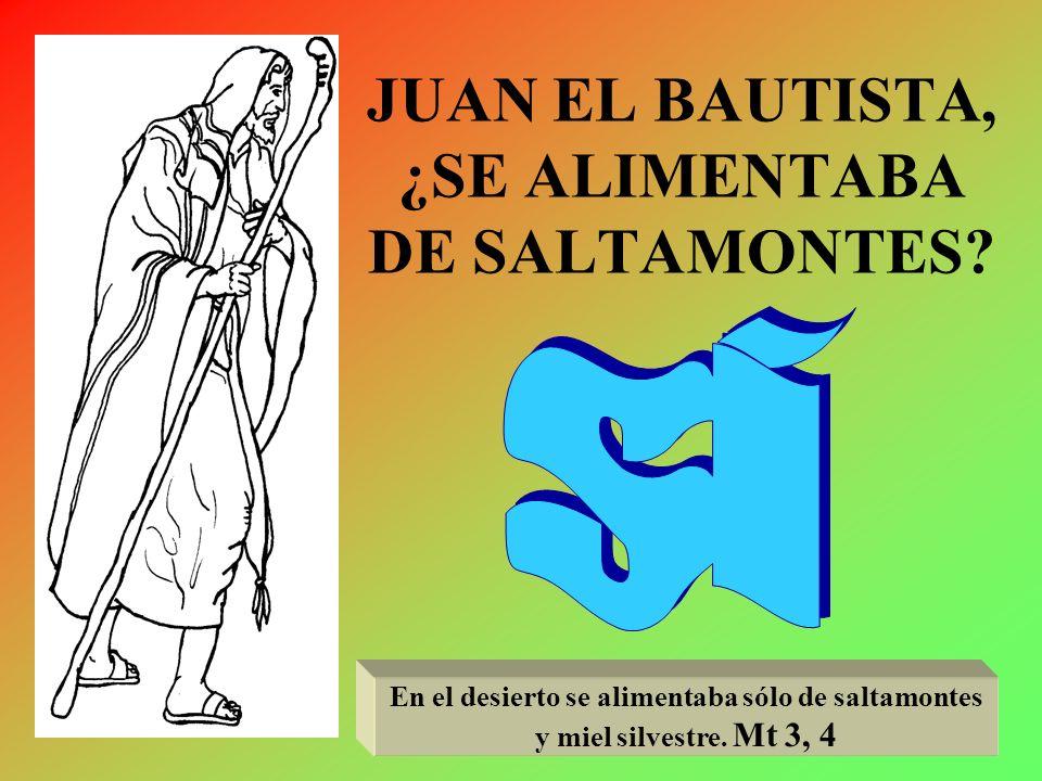 JUAN EL BAUTISTA, ¿SE ALIMENTABA DE SALTAMONTES.