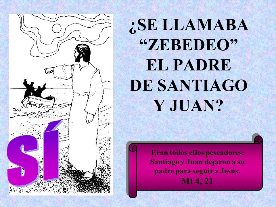 ¿SE LLAMABA ZEBEDEO EL PADRE DE SANTIAGO Y JUAN? Eran todos ellos pescadores. Santiago y Juan dejaron a su padre para seguir a Jesús. Mt 4, 21 Eran to