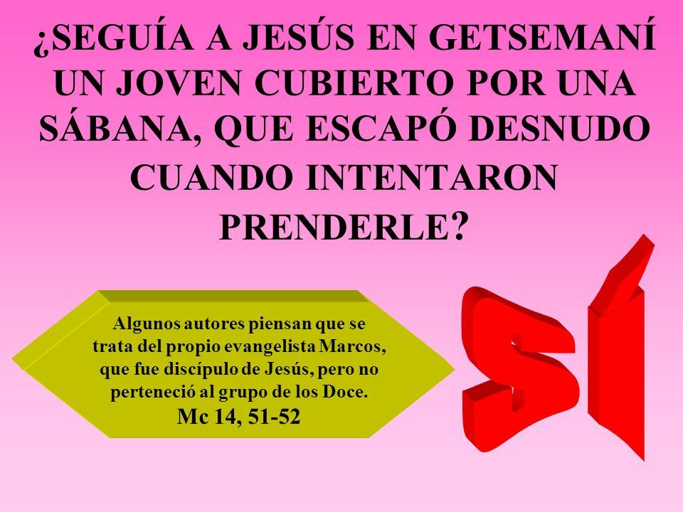 ¿SEGUÍA A JESÚS EN GETSEMANÍ UN JOVEN CUBIERTO POR UNA SÁBANA, QUE ESCAPÓ DESNUDO CUANDO INTENTARON PRENDERLE ? Algunos autores piensan que se trata d