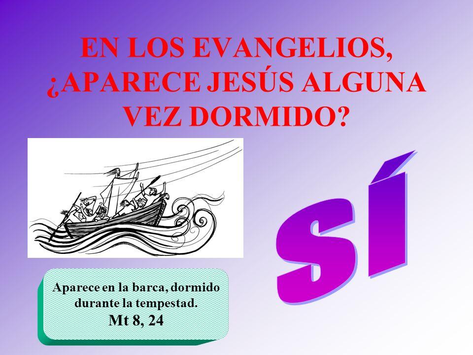 EN LOS EVANGELIOS, ¿APARECE JESÚS ALGUNA VEZ DORMIDO? Aparece en la barca, dormido durante la tempestad. Mt 8, 24