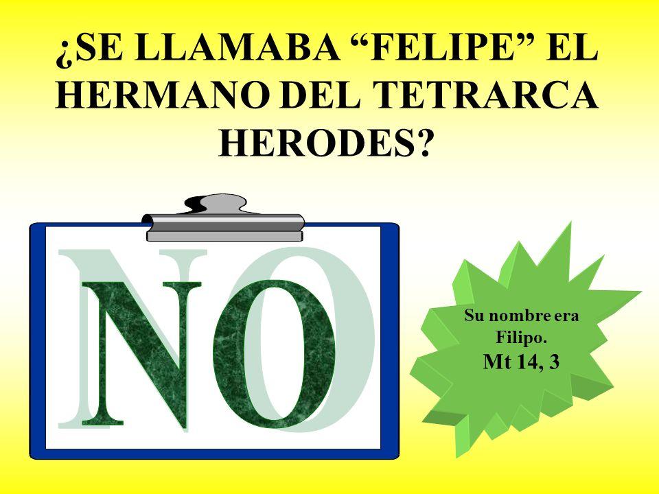 ¿SE LLAMABA FELIPE EL HERMANO DEL TETRARCA HERODES? Su nombre era Filipo. Mt 14, 3