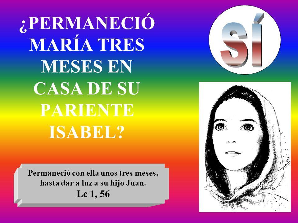 ¿PERMANECIÓ MARÍA TRES MESES EN CASA DE SU PARIENTE ISABEL? Permaneció con ella unos tres meses, hasta dar a luz a su hijo Juan. Lc 1, 56