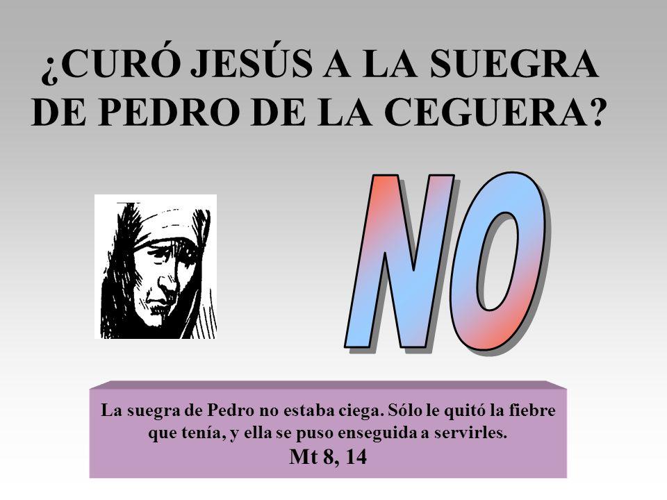 ¿CURÓ JESÚS A LA SUEGRA DE PEDRO DE LA CEGUERA? La suegra de Pedro no estaba ciega. Sólo le quitó la fiebre que tenía, y ella se puso enseguida a serv