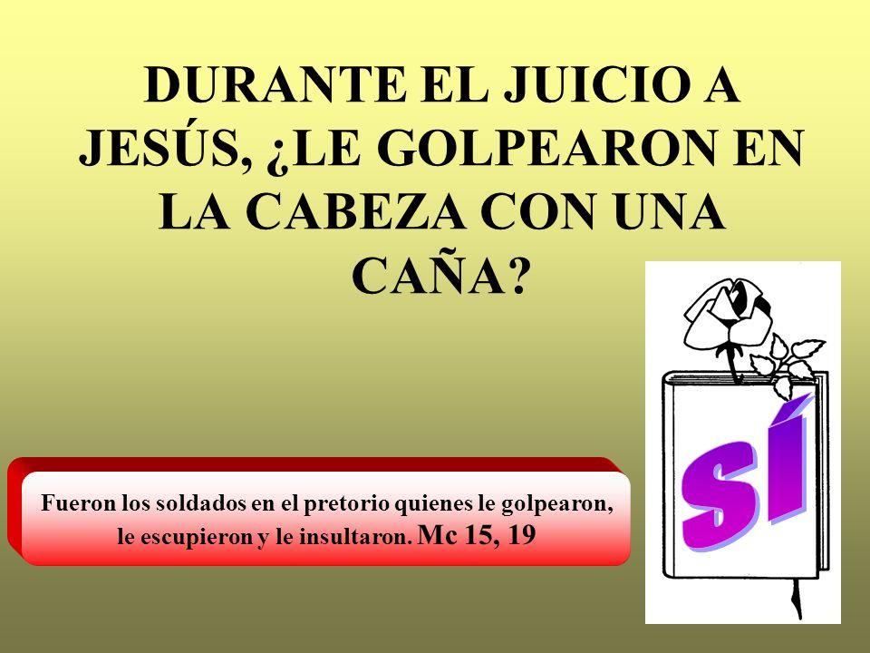 DURANTE EL JUICIO A JESÚS, ¿LE GOLPEARON EN LA CABEZA CON UNA CAÑA? Fueron los soldados en el pretorio quienes le golpearon, le escupieron y le insult