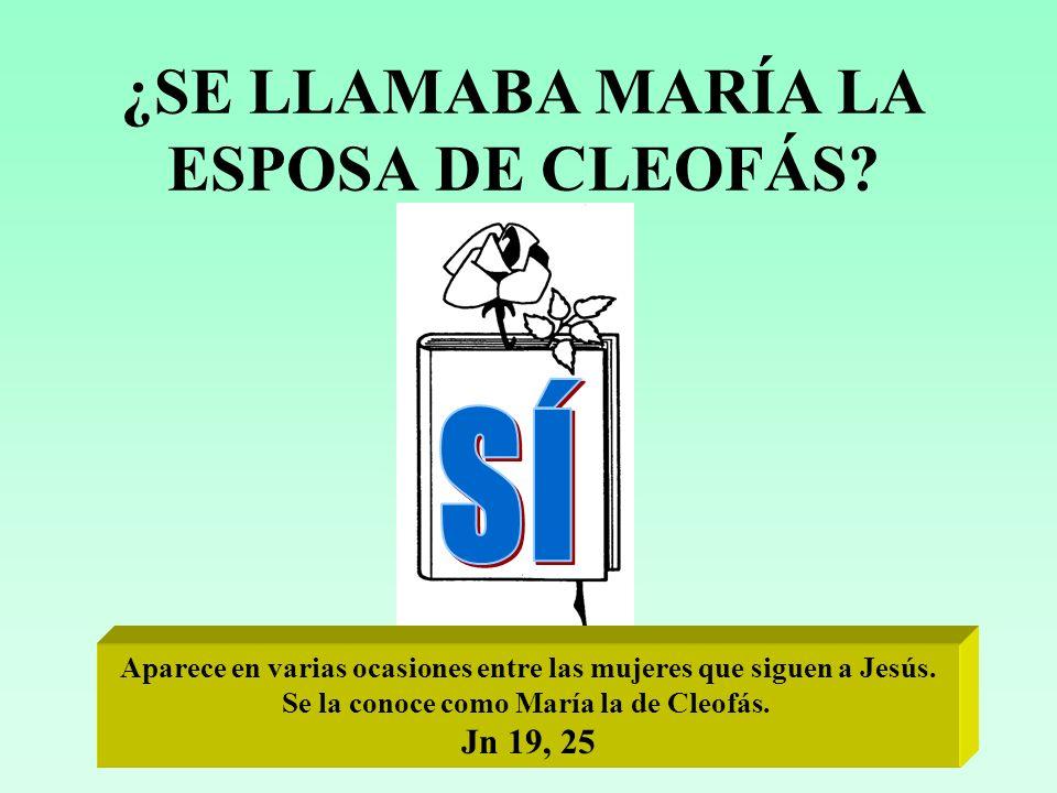 ¿SE LLAMABA MARÍA LA ESPOSA DE CLEOFÁS.