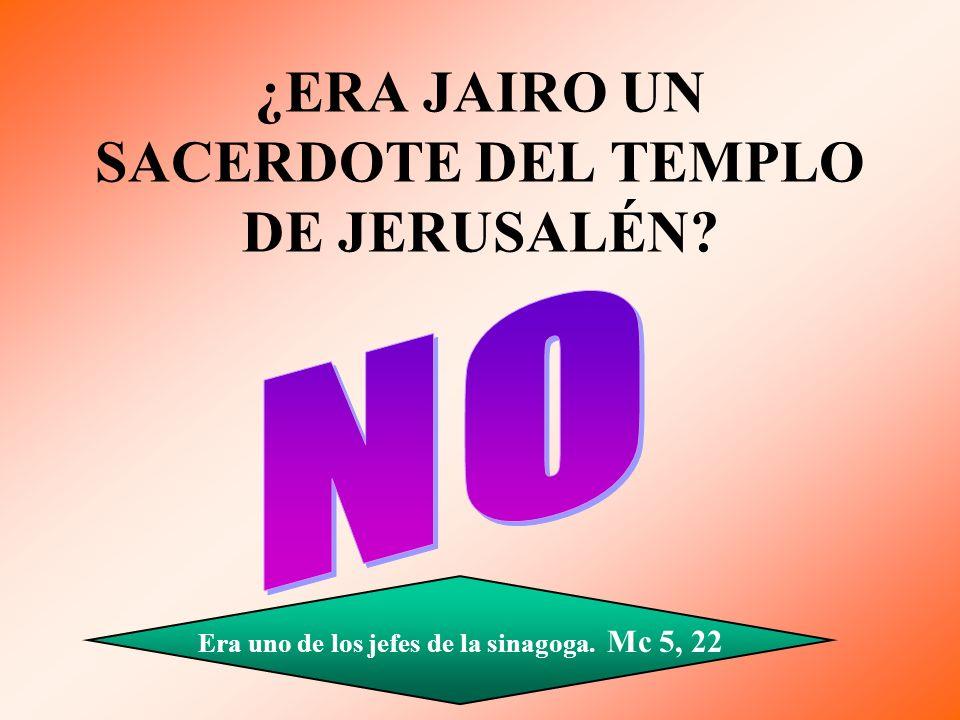 ¿ERA JAIRO UN SACERDOTE DEL TEMPLO DE JERUSALÉN? Era uno de los jefes de la sinagoga. Mc 5, 22