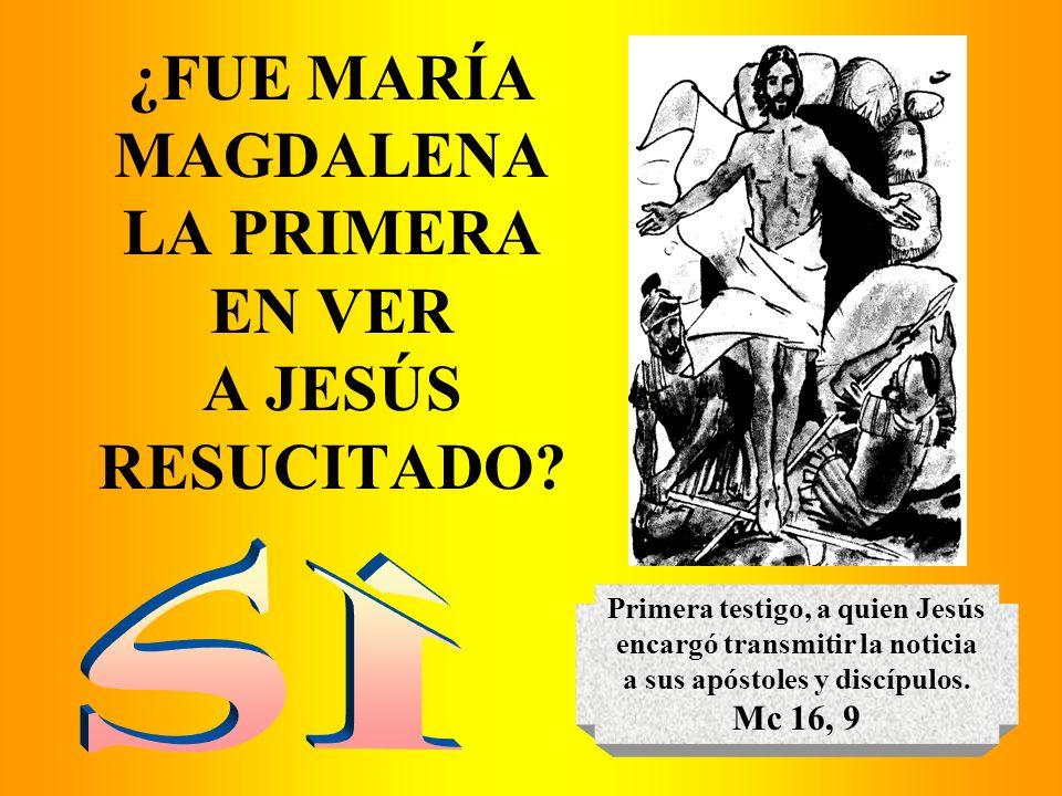¿FUE MARÍA MAGDALENA LA PRIMERA EN VER A JESÚS RESUCITADO? Primera testigo, a quien Jesús encargó transmitir la noticia a sus apóstoles y discípulos.