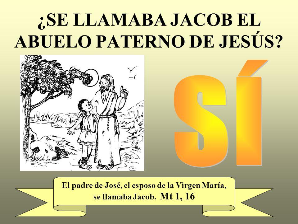 ¿SE LLAMABA JACOB EL ABUELO PATERNO DE JESÚS? El padre de José, el esposo de la Virgen María, se llamaba Jacob. Mt 1, 16