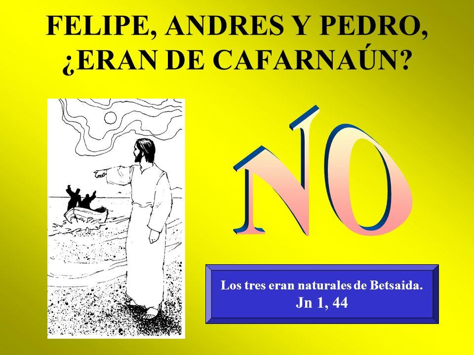 FELIPE, ANDRES Y PEDRO, ¿ERAN DE CAFARNAÚN? Los tres eran naturales de Betsaida. Jn 1, 44