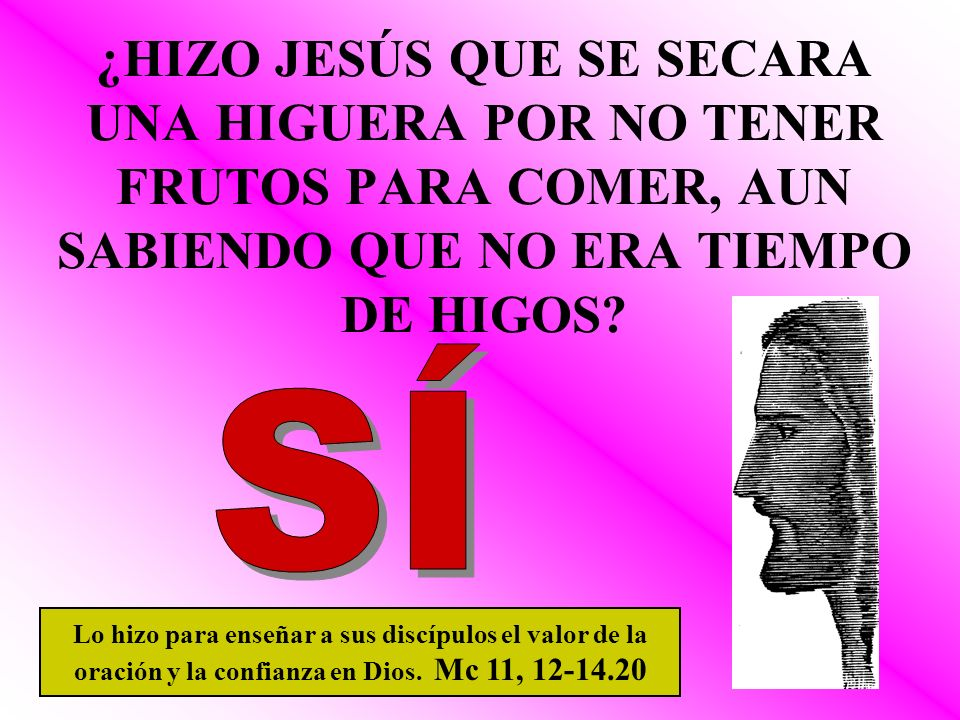 ¿HIZO JESÚS QUE SE SECARA UNA HIGUERA POR NO TENER FRUTOS PARA COMER, AUN SABIENDO QUE NO ERA TIEMPO DE HIGOS? Lo hizo para enseñar a sus discípulos e