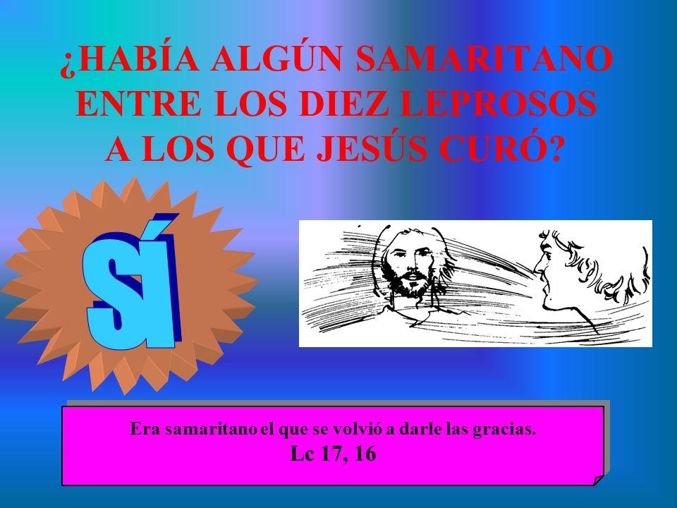 ¿HABÍA ALGÚN SAMARITANO ENTRE LOS DIEZ LEPROSOS A LOS QUE JESÚS CURÓ? Era samaritano el que se volvió a darle las gracias. Lc 17, 16 Era samaritano el