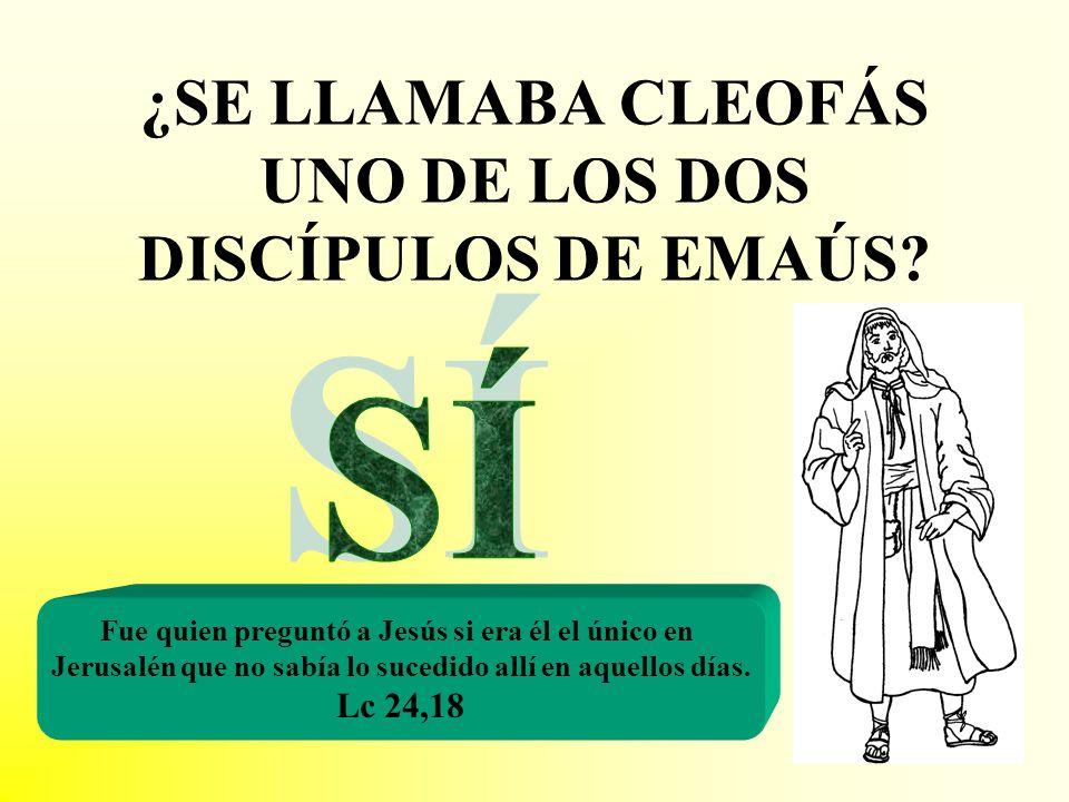 ¿SE LLAMABA CLEOFÁS UNO DE LOS DOS DISCÍPULOS DE EMAÚS? Fue quien preguntó a Jesús si era él el único en Jerusalén que no sabía lo sucedido allí en aq