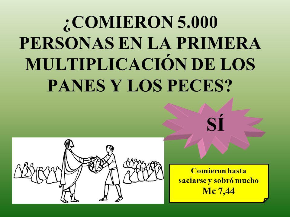 ¿COMIERON 5.000 PERSONAS EN LA PRIMERA MULTIPLICACIÓN DE LOS PANES Y LOS PECES? Comieron hasta saciarse y sobró mucho Mc 7,44 SÍ