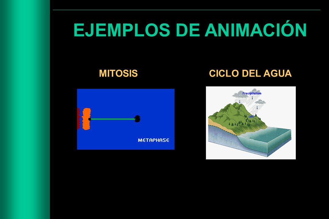 EJEMPLOS DE ANIMACIÓN MITOSISCICLO DEL AGUA