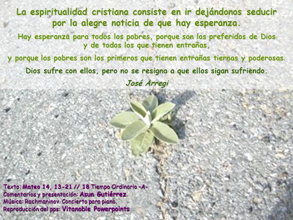 La espiritualidad cristiana consiste en ir dejándonos seducir por la alegre noticia de que hay esperanza.