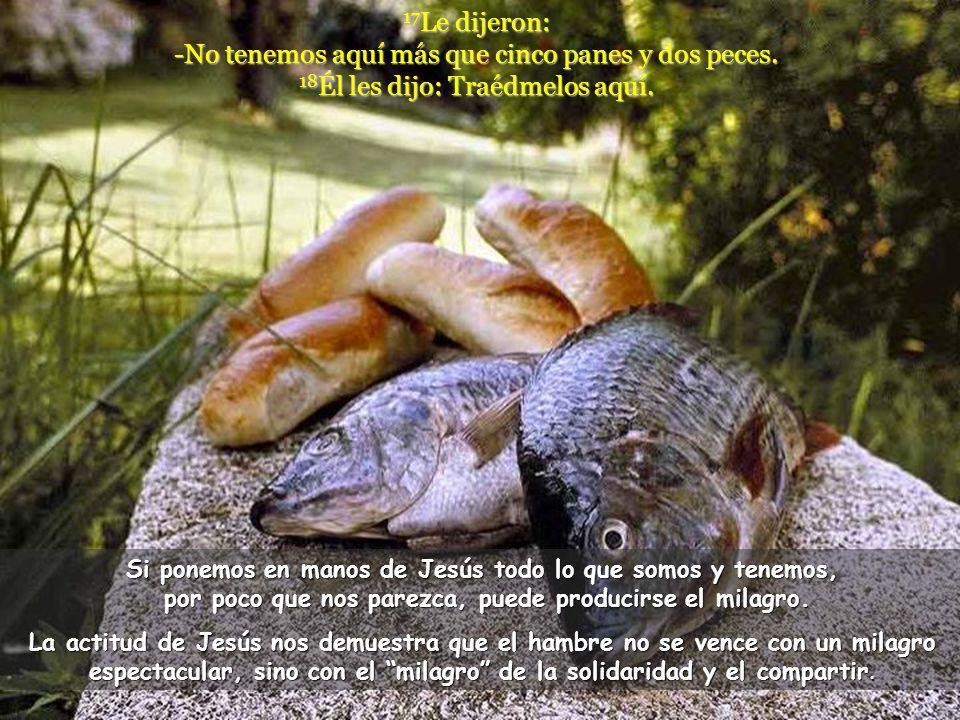 17 Le dijeron: -No tenemos aquí más que cinco panes y dos peces.