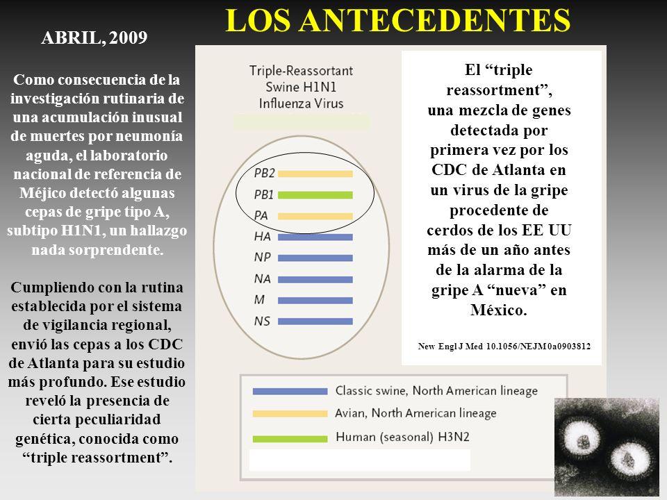 La epidemia debió comenzar en el sur de los EE UU y/o el norte de Méjico en el mes de Marzo, cuando la gripe comenzaba ya a declinar en el Hemisferio Norte, y la importación del virus a través de los viajeros internacionales supuso un rebrote de la enfermedad en algunos países durante la primavera y el comienzo del verano.