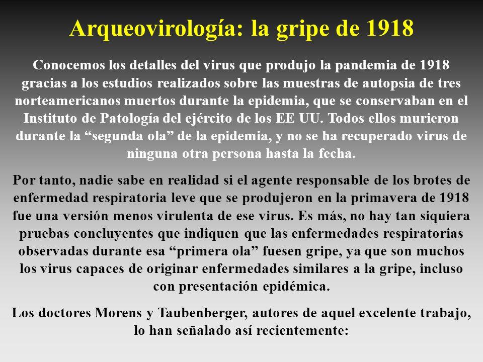 Conocemos los detalles del virus que produjo la pandemia de 1918 gracias a los estudios realizados sobre las muestras de autopsia de tres norteamerica