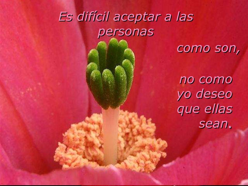 Es difícil aceptar a las personas como son, no como yo deseo.