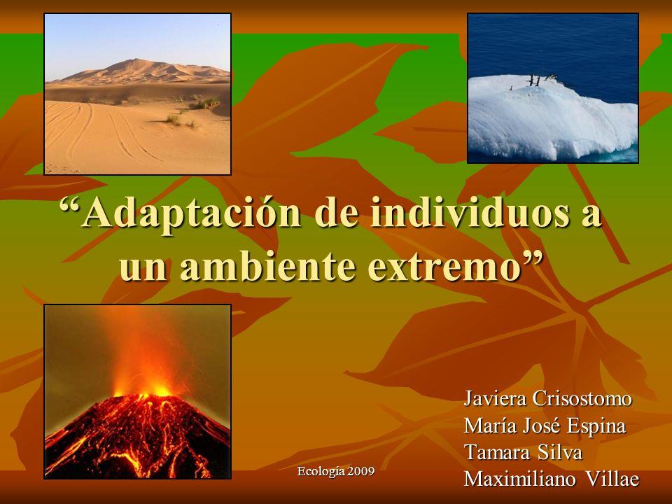 Ecología 2009 Adaptación de individuos a un ambiente extremo Javiera Crisostomo María José Espina Tamara Silva Maximiliano Villae