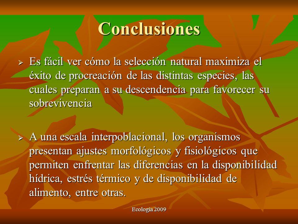 Ecología 2009 Conclusiones Es fácil ver cómo la selección natural maximiza el éxito de procreación de las distintas especies, las cuales preparan a su