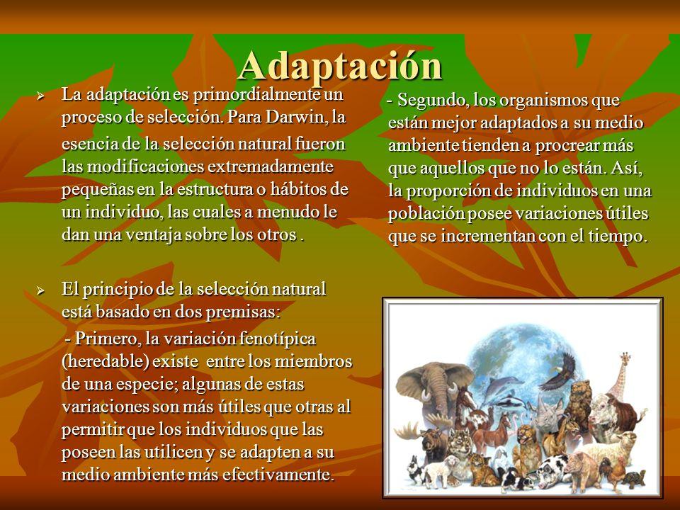 Adaptación La adaptación es primordialmente un proceso de selección. Para Darwin, la La adaptación es primordialmente un proceso de selección. Para Da