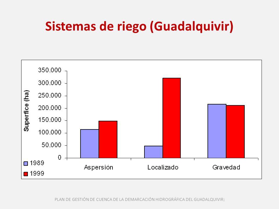 Sistemas de riego (Guadalquivir) PLAN DE GESTIÓN DE CUENCA DE LA DEMARCACIÓN HIDROGRÁFICA DEL GUADALQUIVIR;
