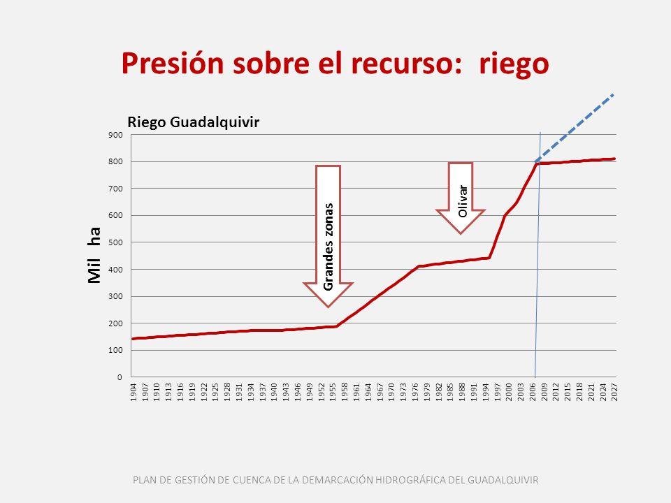 Presión sobre el recurso: riego Grandes zonas Olivar PLAN DE GESTIÓN DE CUENCA DE LA DEMARCACIÓN HIDROGRÁFICA DEL GUADALQUIVIR