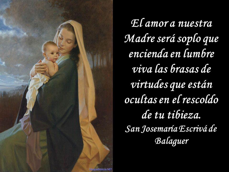 Dios te salve, María, Madre de Dios. En Vos está y estuvo todo la plenitud de la gracia y todo bien. San Francisco de Asís Dios te salve, María, Madre